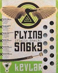 Transfil Flying Snake Brake Kit
